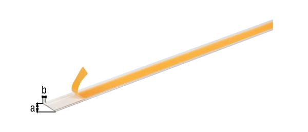 Flachstange, selbstklebend, Material: Aluminium, Oberfläche: silberfarbig eloxiert, Breite: 30mm, Materialstärke: 2mm, Ausführung: selbstklebend, Länge: 2600mm
